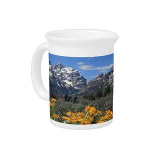 黄色い春の花の壮大なTetonの国立公園 ピッチャー