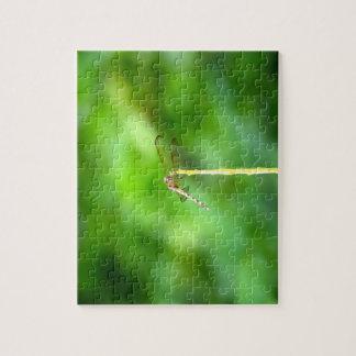 黄色い棒の緑の背景の昆虫のトンボ ジグソーパズル