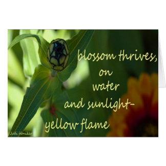 黄色い炎 カード