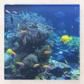 黄色い熱帯魚 ガラスコースター