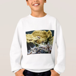 黄色い珊瑚 スウェットシャツ