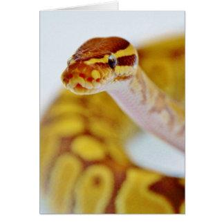 黄色い球の大蛇の頭部 カード