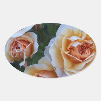 黄色い白いバラ 楕円形シール