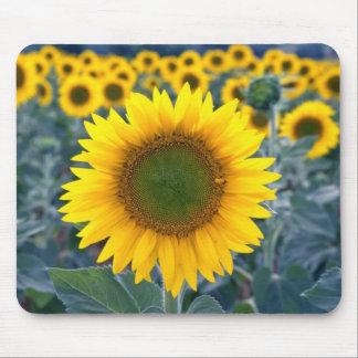 黄色い群集の花から際立って下さい マウスパッド