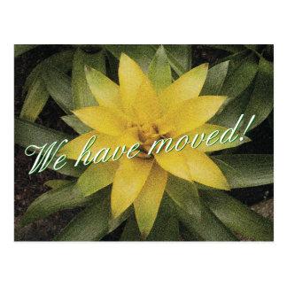 黄色い花が付いている花の移動郵便はがき ポストカード