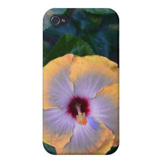 黄色い花のパフのSpeckのiPhoneの箱 iPhone 4 カバー