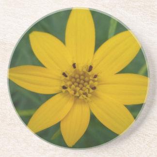 黄色い花の砂岩コースター コースター