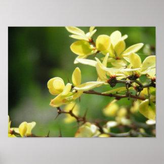 黄色い花びら ポスター