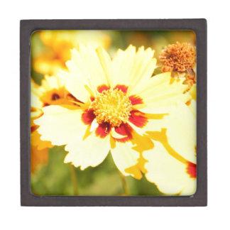 黄色い花 ギフトボックス