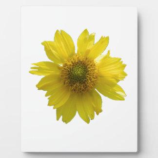 黄色い花 フォトプラーク