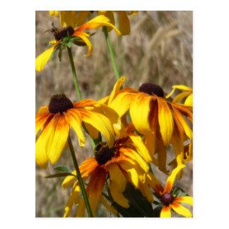 黄色い花 ポストカード