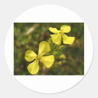 黄色い花 ラウンドシール