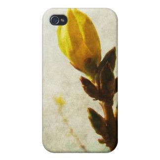 黄色い芽 iPhone 4/4Sケース