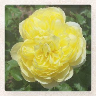 黄色い英国のばら色の写真の正方形ガラスのコースター ガラスコースター
