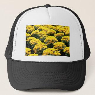 黄色い菊の花 キャップ
