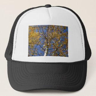 黄色い葉を通って調べる《植物》アスペンの木 キャップ