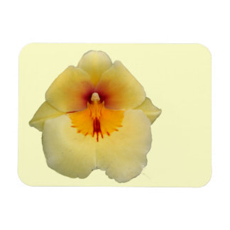 黄色い蘭の報酬の磁石 マグネット