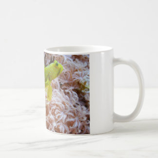 黄色い車海老ハゼ コーヒーマグカップ