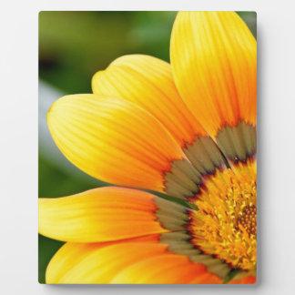 黄色い開花 フォトプラーク