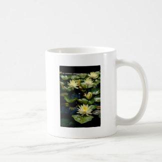 黄色い《植物》スイレンのマグ コーヒーマグカップ