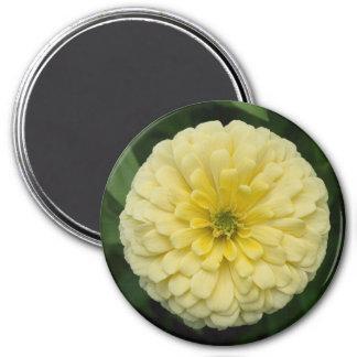 黄色い《植物》百日草の花の磁石 マグネット