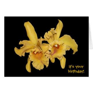黄色いCattleyaの蘭のバースデー・カード カード