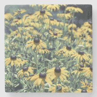 黄色いEchinaceaの花 ストーンコースター