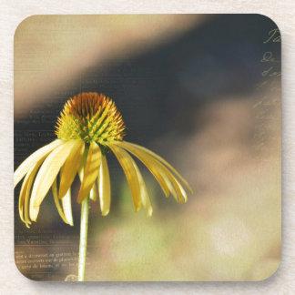 黄色いEchinacea コースター