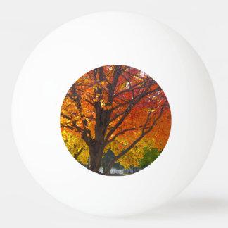 黄色およびオレンジピンポン球の紅葉 卓球ボール
