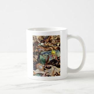 黄色およびプラムマスのユリおよびかたつむりの貝 コーヒーマグカップ