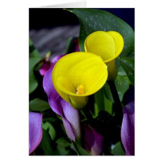黄色および紫色のオランダカイウユリの挨拶状 カード