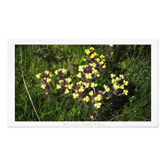 """""""黄色および草""""、花の装飾 フォトプリント"""