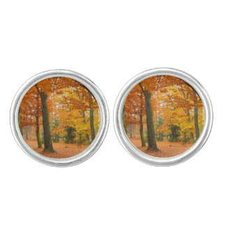黄色および赤い秋の木および葉 カフブローチ