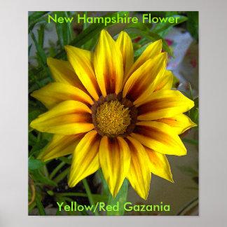黄色および赤いGazania7-07-07の、黄色または赤いGazan… ポスター