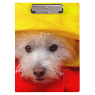 黄色からかいま見るウエスト・ハイランド・ホワイト・テリア クリップボード
