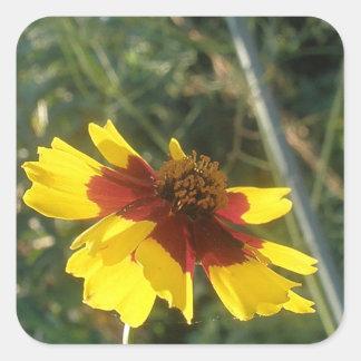 黄色く赤い花 スクエアシール