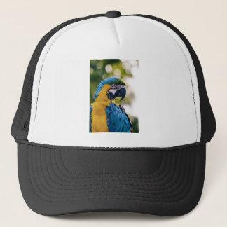 黄色く青いコンゴウインコのオウム キャップ