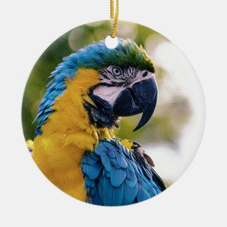 黄色く青いコンゴウインコのオウム セラミックオーナメント