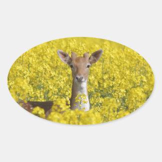 黄色の休閑地 楕円形シール