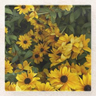黄色の分野 ガラスコースター