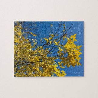 黄色の秋の木はジグソーパズルを去ります ジグソーパズル