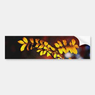 黄色の葉 バンパーステッカー