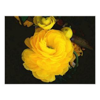 黄色バラの写真撮影 フォトプリント