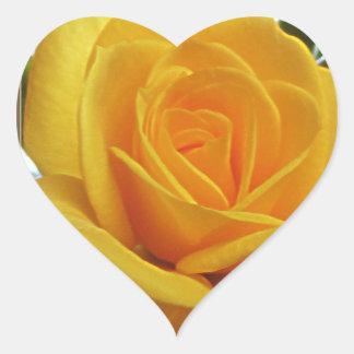 黄色バラ1bのハート ハートシール