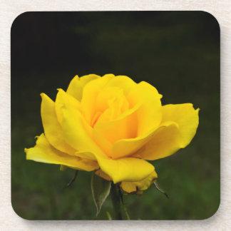 黄色バラ コースター