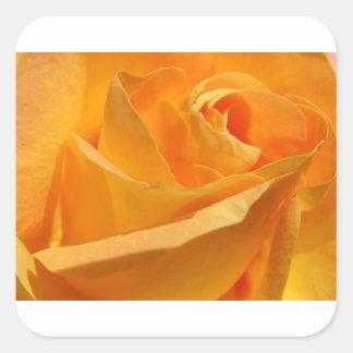 黄色バラ スクエアシール