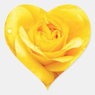 黄色バラ ハートシール
