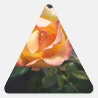 黄色バラ 三角形シール