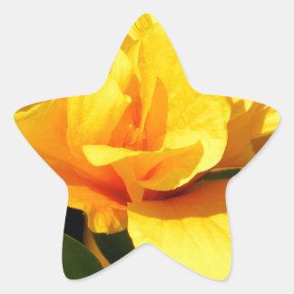 黄色バラ 星シール