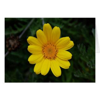 黄色chamomileを愛するために開けて下さい カード